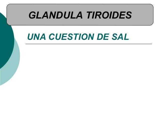 UNA CUESTION DE SAL GLANDULA TIROIDES