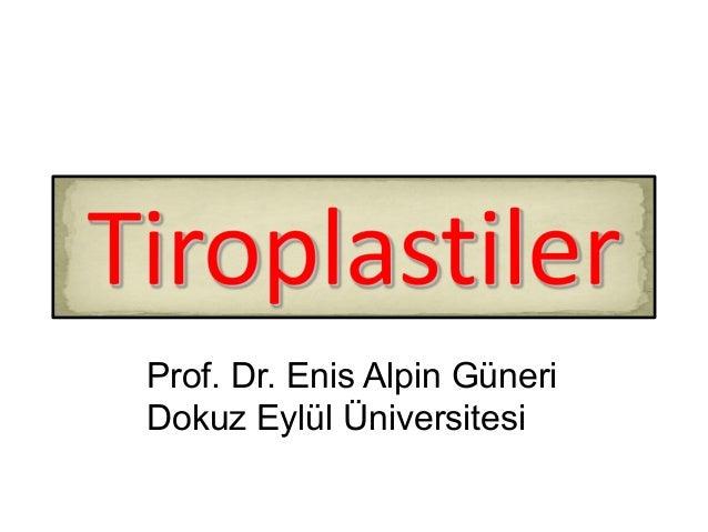 Prof. Dr. Enis Alpin Güneri Dokuz Eylül Üniversitesi