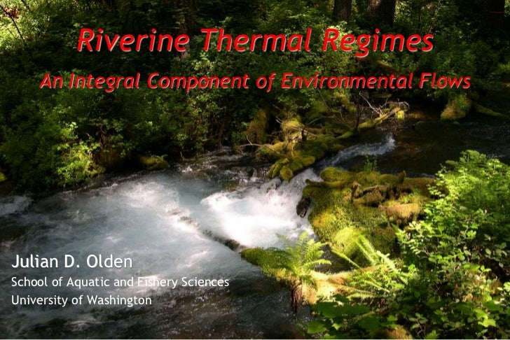 Riverine Thermal Regimes    An Integral Component of Environmental FlowsJulian D. OldenSchool of Aquatic and Fishery Scien...