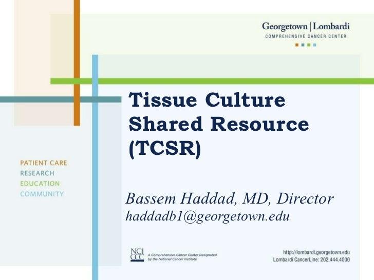 Tissue Culture Shared Resource (TCSR) Bassem Haddad, MD, Director [email_address]