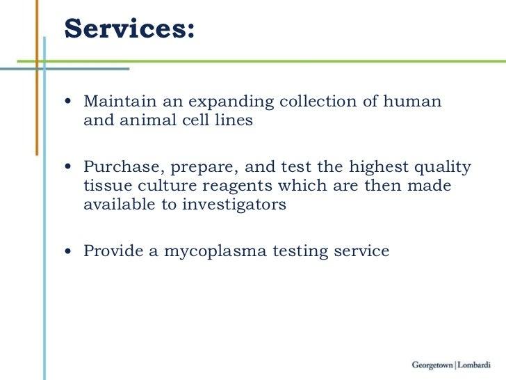 Tissue Culture Slide 3