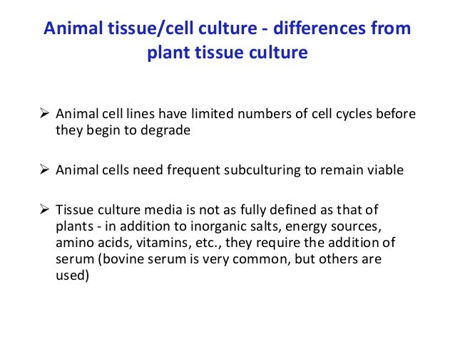 animal tissue culture Tissue culture is a way of getting more cells from the tissue by growing them off of the organism to do this it is necessary to set up an artificial environment in which the cells will grow once the cells have been cultured, they can be used in many different types of studies, including studies on.