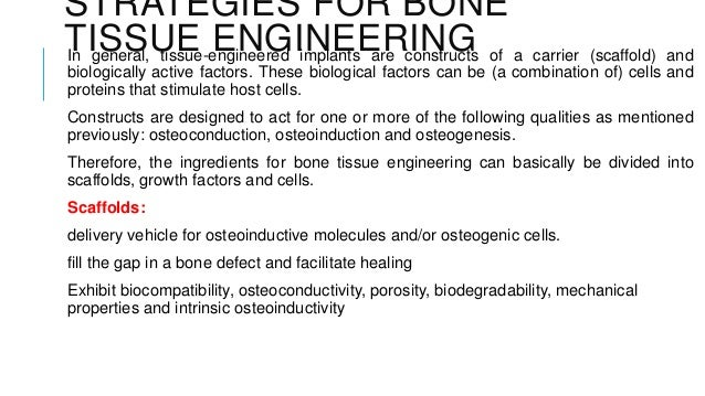 Tissue Engineering Of Bone
