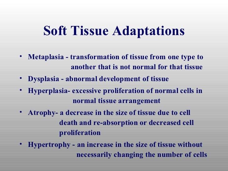 Tissue Healing