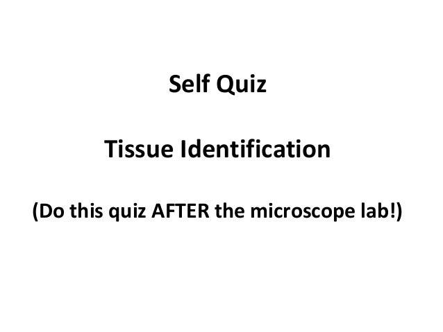 Tissue microscope mini-quiz