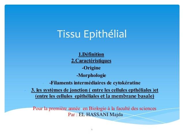 Tissu Epithélial 1.Définition 2.Caractéristiques -Origine -Morphologie - -Filaments intermédiaires de cytokératine - 3. le...