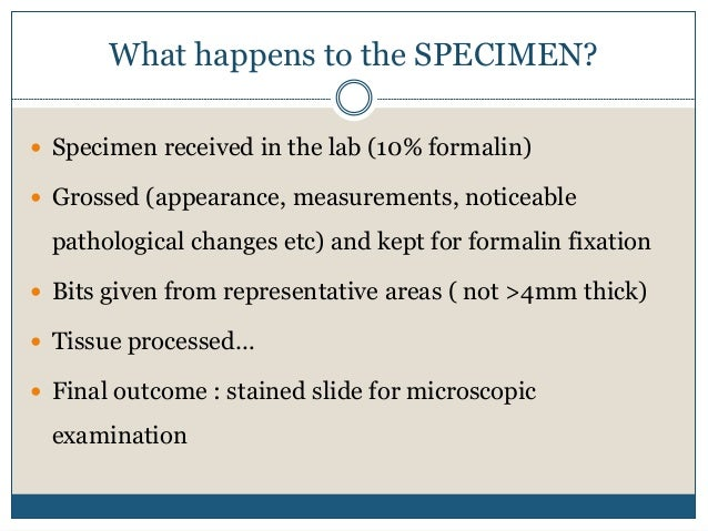 Tissue  processing Slide 3