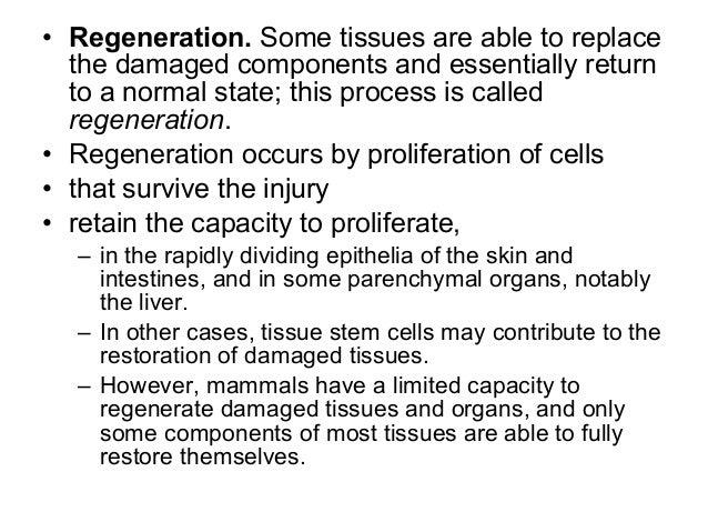 Tissue repair, regeneration and wound healing (1)