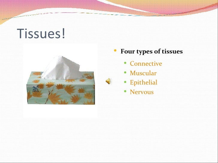 Tissues! <ul><li>Four types of tissues </li></ul><ul><ul><li>Connective </li></ul></ul><ul><ul><li>Muscular </li></ul></ul...