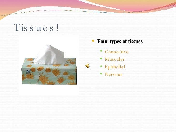Tissues! <ul><li>Four types of tissues </li></ul><ul><ul><li>Connective </li></ul></ul><ul><ul><li>Muscular </li></ul></ul...