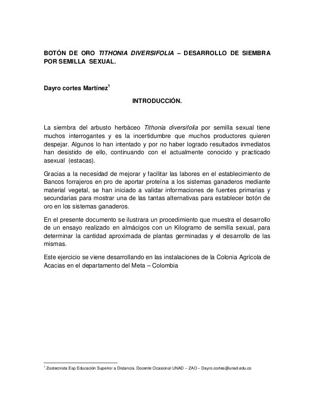 BOTÓN DE ORO TITHONIA DIVERSIFOLIA – DESARROLLO DE SIEMBRA POR SEMILLA SEXUAL. Dayro cortes Martínez1 INTRODUCCIÓN. La sie...