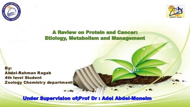 A Review on Protein and Cancer: Etiology, Metabolism and Management By: Abdel-Rahman Ragab 4th level Student Zoology Chemi...