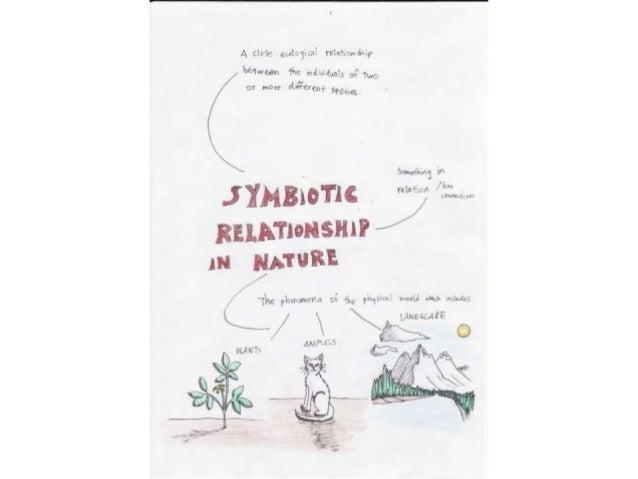 Symbiotic relationship in nature