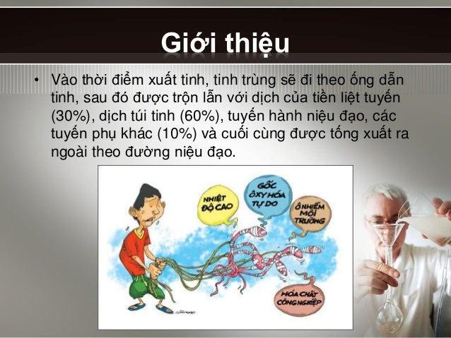 Tinh dịch đồ - semen analysis Slide 3