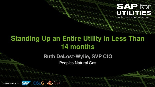 A collaboration of: Standing Up an Entire Utility in Less Than 14 months Ruth DeLost-Wylie, SVP CIO Peoples Natural Gas