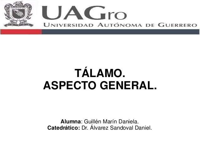 TÁLAMO.  ASPECTO GENERAL.  Alumna: Guillén Marín Daniela.  Catedrático: Dr. Álvarez Sandoval Daniel.
