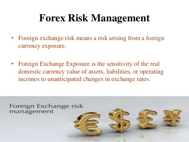 Forex risk management project