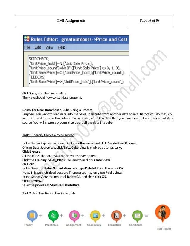 cognos tm1 assignments