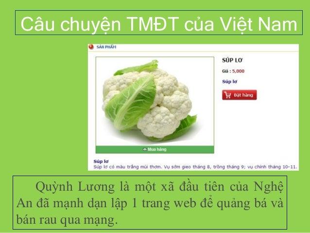 Câu chuyện TMĐT của Việt Nam Quỳnh Lương là một xã đầu tiên của Nghệ An đã mạnh dạn lập 1 trang web để quảng bá và bán rau...
