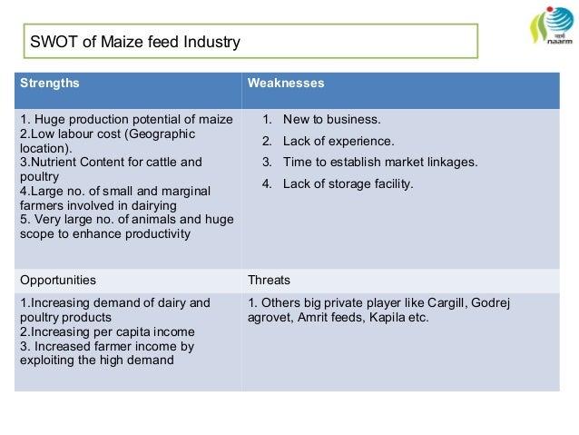 vegetable export business plan