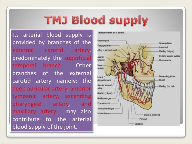 Tmj anatomy and problems by Dr.mostafa kareem