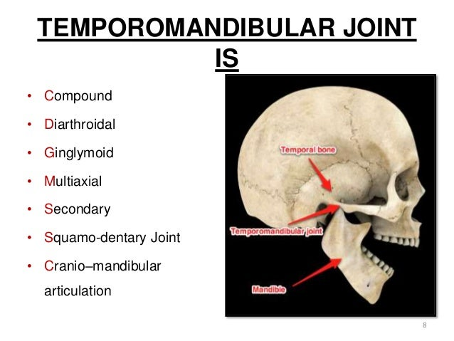 tmj and prosthodontic implications, Human Body