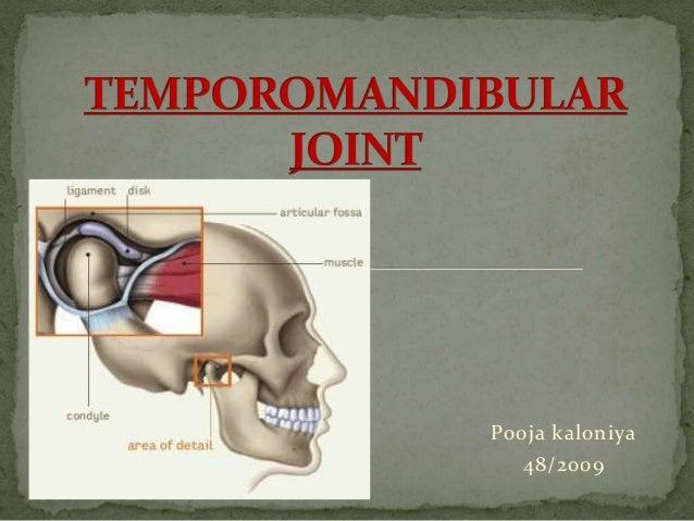 Temporomandibular joint anatomy ppt