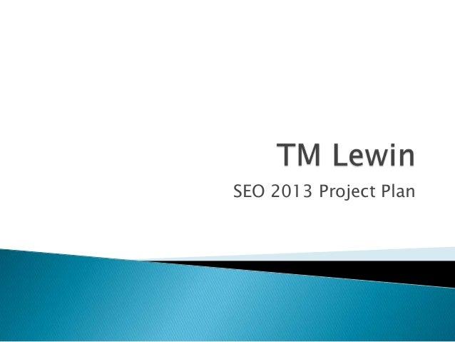 SEO 2013 Project Plan