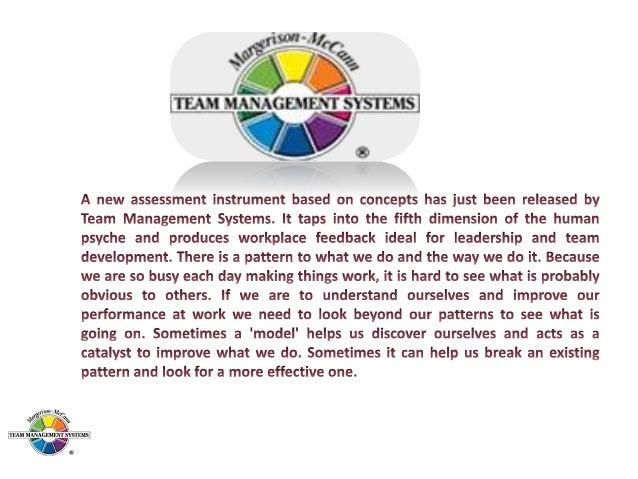 1.Advising 2.Innovating 3.Promoting 4.Developing 5.Organizing 6.Producing 7.Inspecting 8.Maintaining  Margerison-McCann Ty...