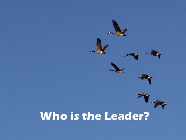 Who is the Leader?