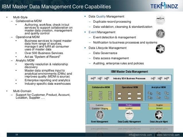 Tekmindz Master Data Management Capabilities