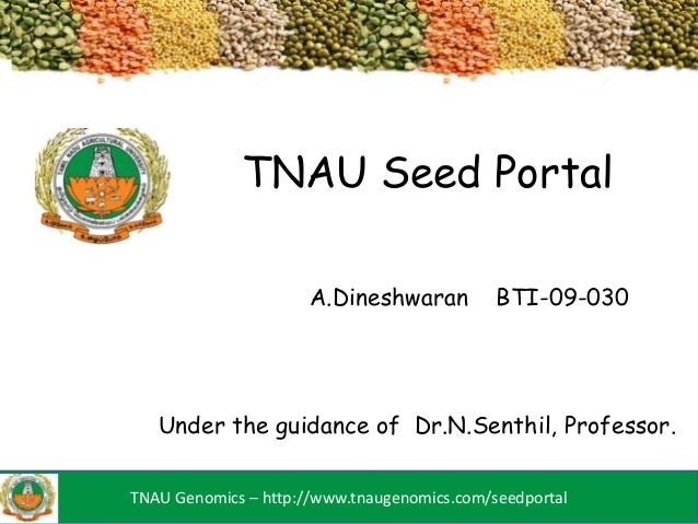 TNAU Seed Portal                      A.Dineshwaran          BTI-09-030   Under the guidance of Dr.N.Senthil, Professor.TN...