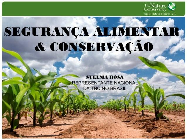 SEGURANÇA ALIMENTAR & CONSERVAÇÃO SUELMA ROSA REPRESENTANTE NACIONAL DA TNC NO BRASIL