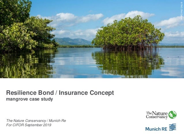 Resilience Bond / Insurance Concept mangrove case study The Nature Conservancy / Munich Re For CIFOR September 2019 Quelle...