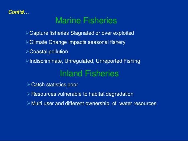 Fisheries Department Activities Tamil Nadu 2013