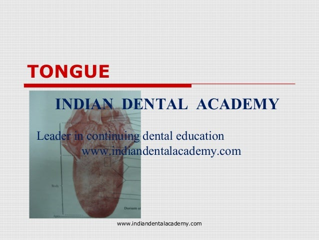 TONGUE INDIAN DENTAL ACADEMY Leader in continuing dental education www.indiandentalacademy.com  www.indiandentalacademy.co...