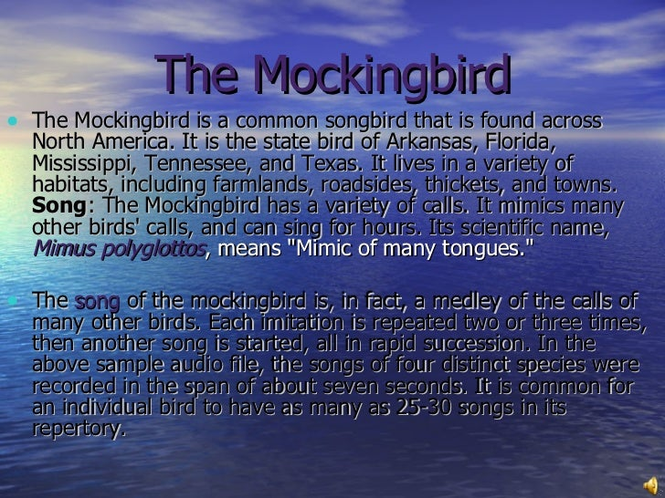To Kill A Mockingbird Symbol Of Innocence