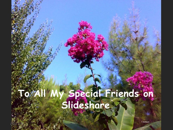 ToAll My Special Friendson Slideshare<br />T.Arikan<br />27.12.2010<br />