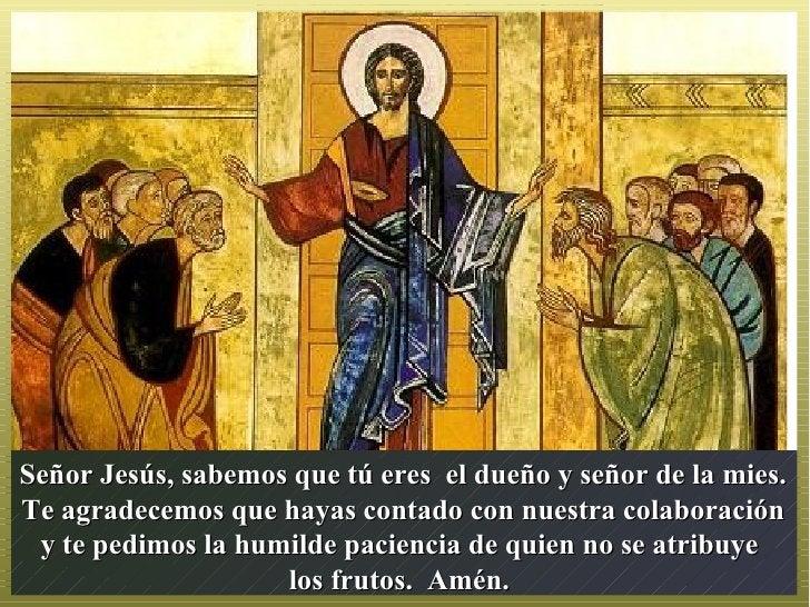 Señor Jesús, sabemos que tú eres el dueño y señor de la mies.Te agradecemos que hayas contado con nuestra colaboración y t...
