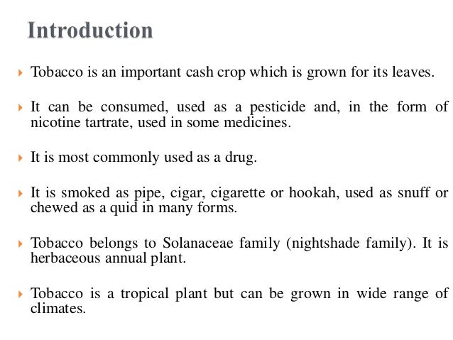  Tobacco is an important cash crop which is grown for its leaves.  It can be consumed, used as a pesticide and, in the f...
