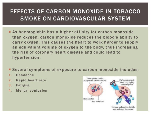 essay on the effect of smoking on gaseous exchange What is its effect on the body long term effects smoking permanently damages the alveoli (air sacs) effects of smoking on the gas exchange system emphysema.
