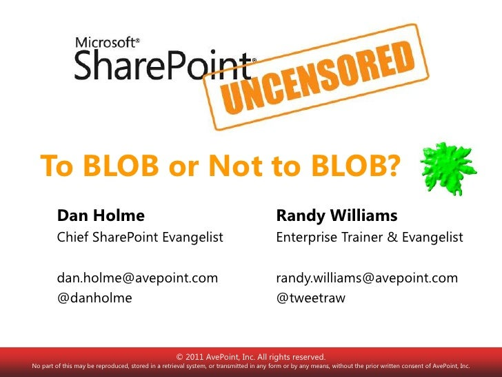 To BLOB or Not to BLOB?         Dan Holme                                                                       Randy Will...