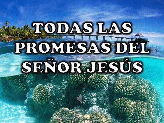 ba6d32ed3cf9 Todas las promesas del Señor Jesús