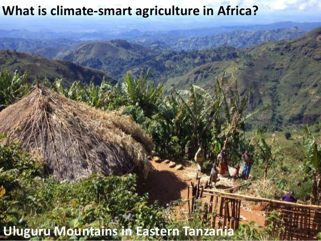 What is climate-smart agriculture in Africa?  Uluguru Mountains in Eastern Tanzania