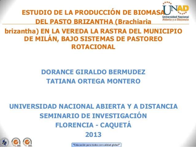 """""""Educación para todos con calidad global""""ESTUDIO DE LA PRODUCCIÓN DE BIOMASADEL PASTO BRIZANTHA (Brachiariabrizantha) EN L..."""
