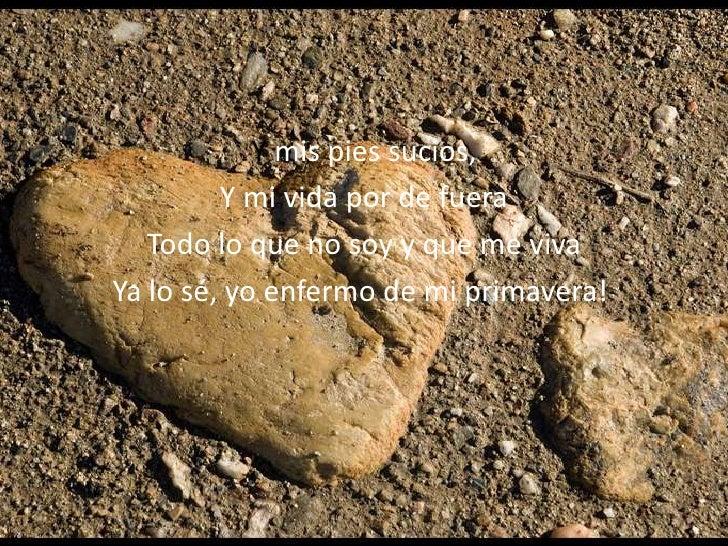 de piedra