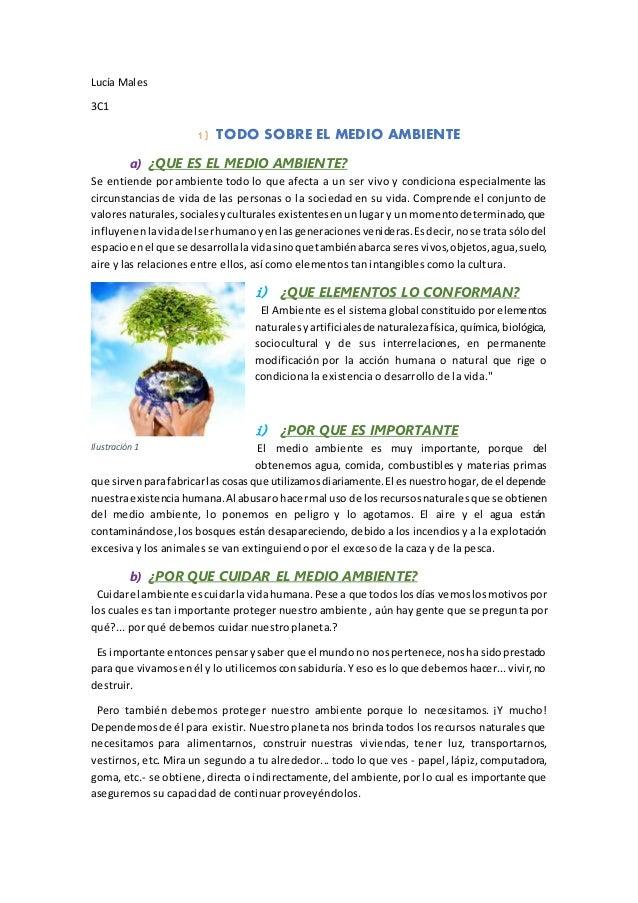 Lucía Males 3C1 1) TODO SOBRE EL MEDIO AMBIENTE a) ¿QUE ES EL MEDIO AMBIENTE? Se entiende por ambiente todo lo que afecta ...