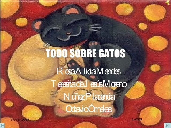 TODO SOBRE GATOS Rosa Alicia Mendes  Teresita de Jesús Moreno  Núñez Placencia Octavio Órnelas