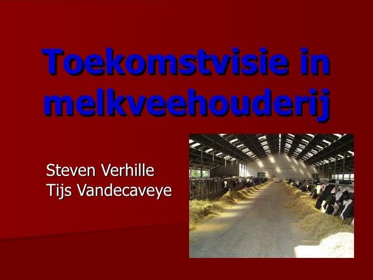 Toekomstvisie in   melkveehouderij Steven Verhille Tijs Vandecaveye