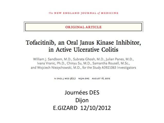 Journées DES        DijonE.GIZARD 12/10/2012